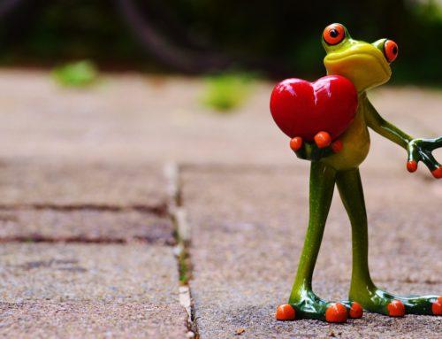L'arte di innamorarsi: seminario di mindfulness sull'amore